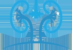 norman-logo